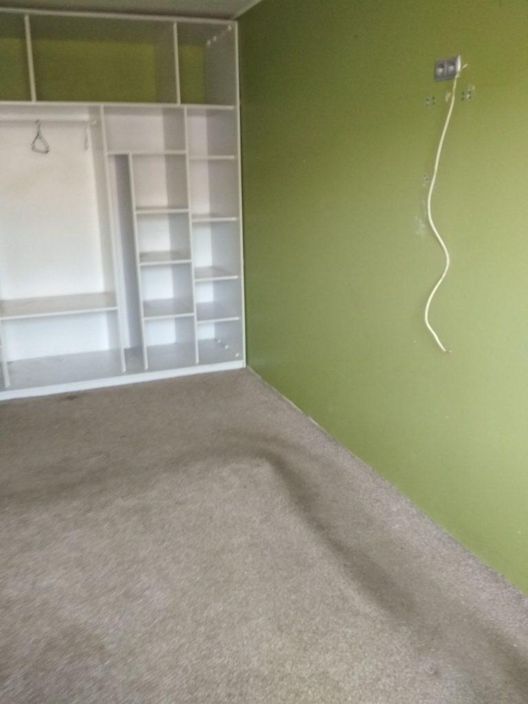 zielone ściany w mieszkaniu na wynajem